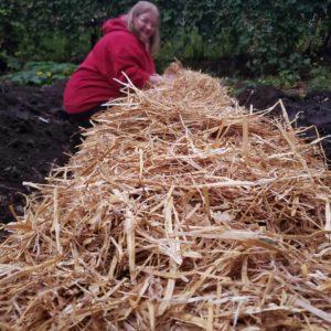 Photo of Meghan planting garlic