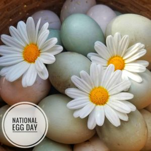 """A basket full of colorful eggs with decorative daisy flowers.  In the corner, text that says """"National Egg Day""""."""